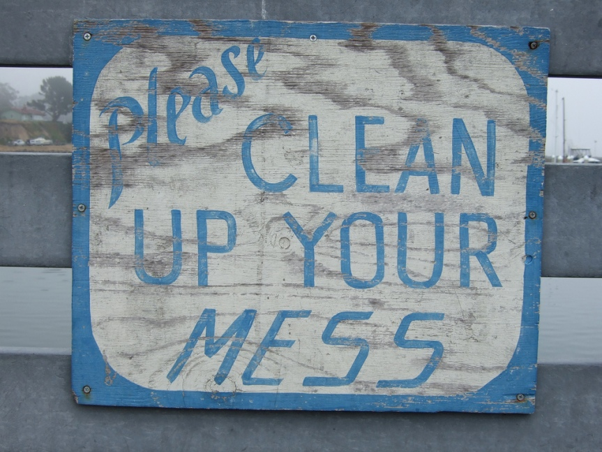 Let's be Clean Freaks – Cleaning Schedules 4 Hour Marathon Once a eek or 20 MinutesEveryday