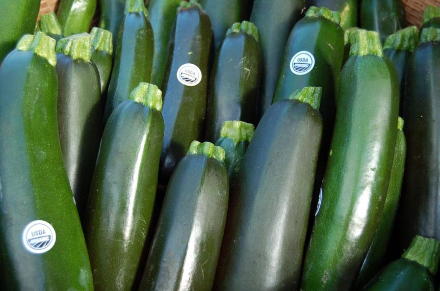 metabolic balance Monday Recipe – Zucchini BasilSoup