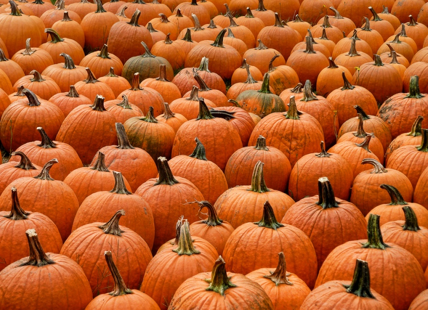 How About Making Halloween MoreGreen