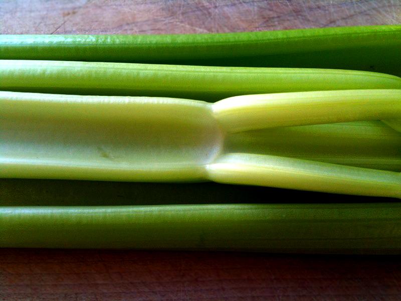 metabolic balance CelerySoup