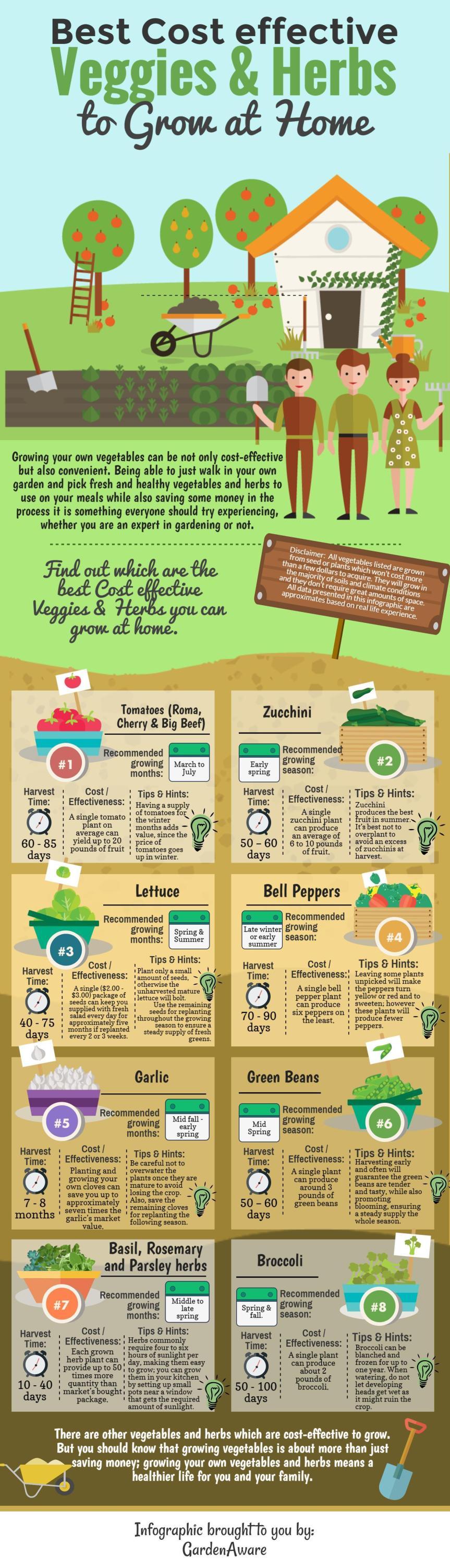 gardening_infographic-1