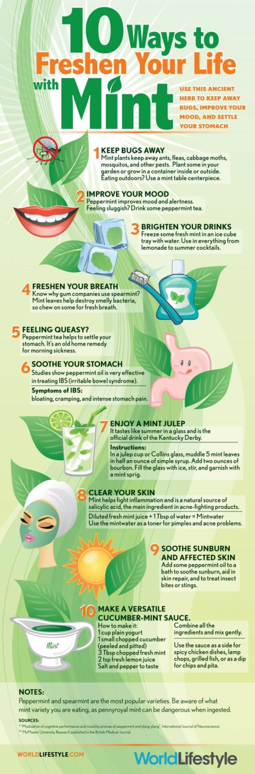 10-ways-to-freshen-your-life-with-mint-01052014