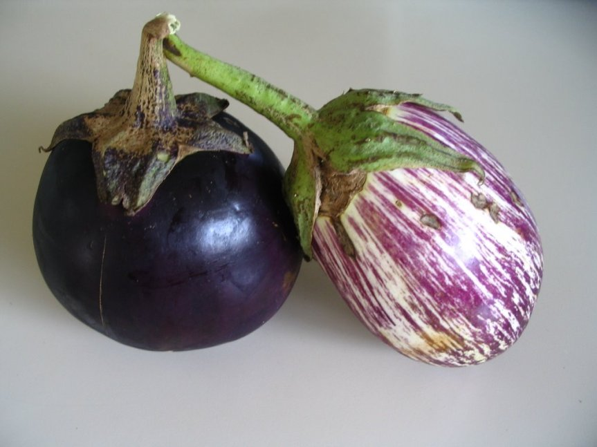Stuffed Eggplant – metabolic balance MondayRecipe