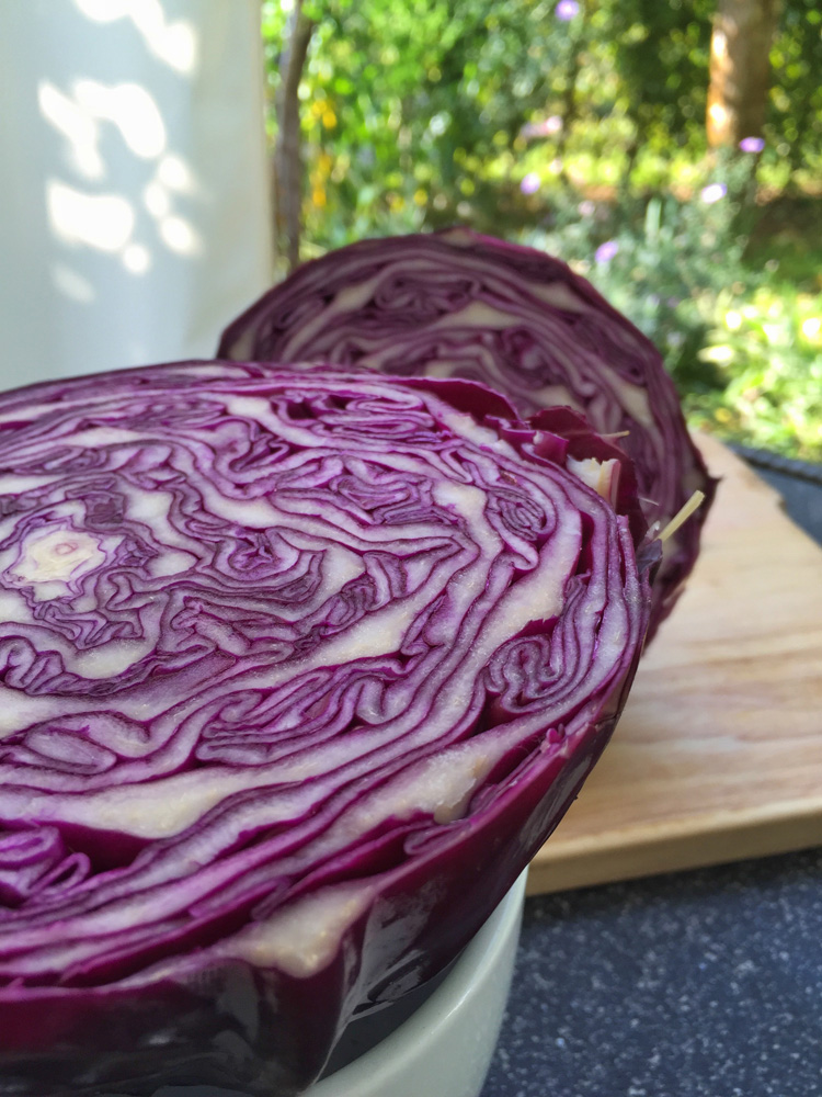 Red Cabbage Juice or Smoothie -metabolic balance Monday Recipe