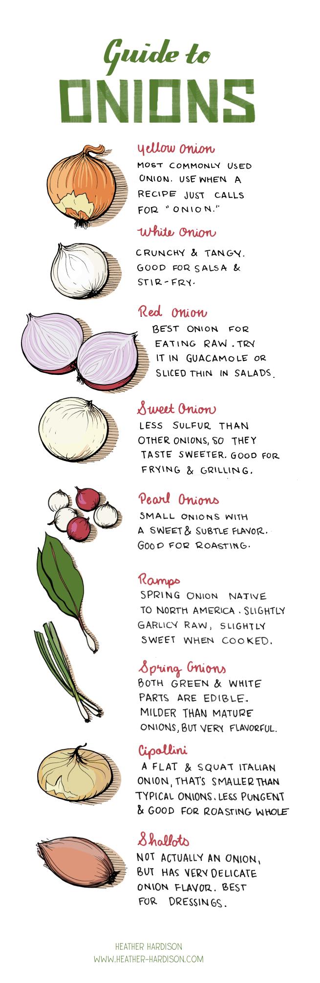 onions2361
