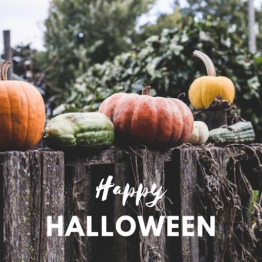 MB 10-31 Halloween