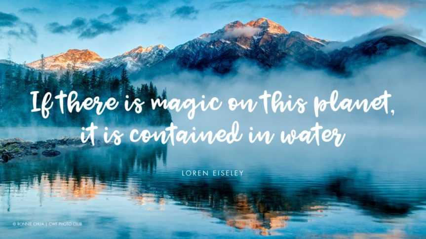 11-06 Loren-Eiseley-1100x619 - water-magic