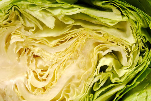 MB 11-27 cabbage