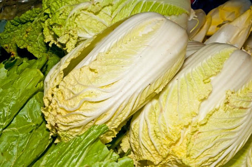 MB 12-21 - Chinese Cabbage