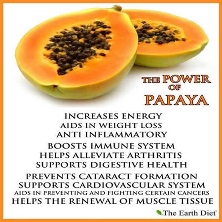 The-Power-Of-Papaya